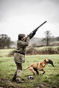 shooting with gundog