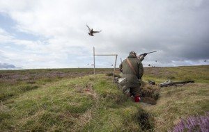 How-to-shoot-grouse-safely