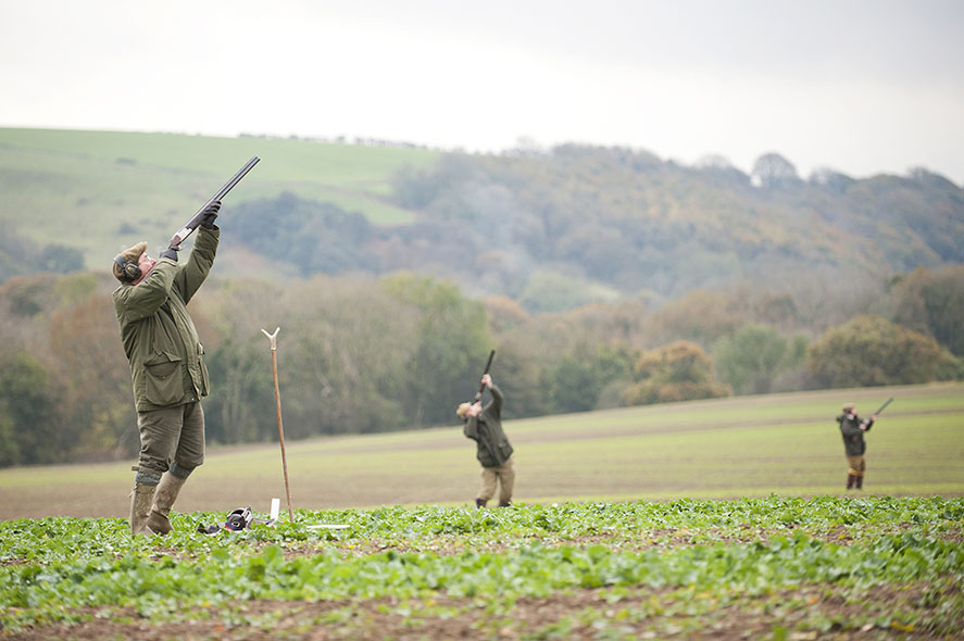 Top 10 UK Pheasant Shoot Locations - Gunplan Blog