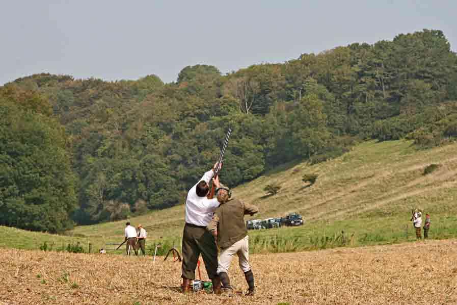 Top 10 UK Pheasant Shoot Locations - Gunplan Blog