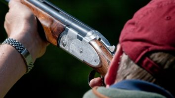 crow and pigeon shooting